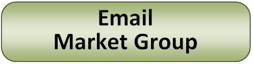 Email Market Group